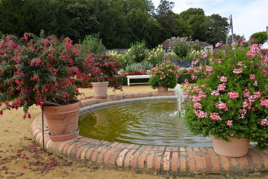 Bassin fleuri dans le jardin du ch teau de bouges 36 for Parc et jardin