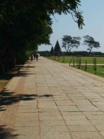 Sea Shore Temple: The pathway leading to the temple