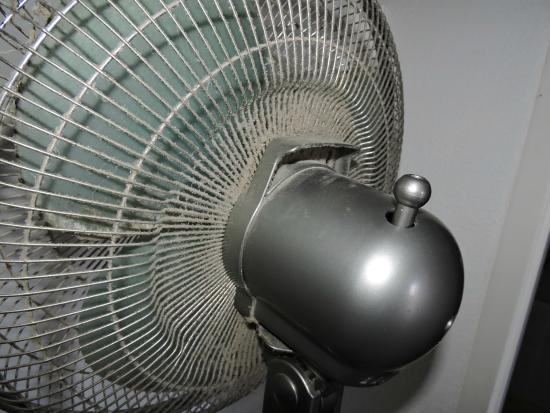 Residence La Palmeraie : le ventilateur