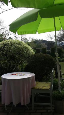 a gardens table