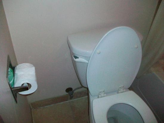 Toilet Paper Holder Loose On The Wall New Handle On Toilet Needed Picture Of Econo Lodge Mount Laurel Tripadvisor