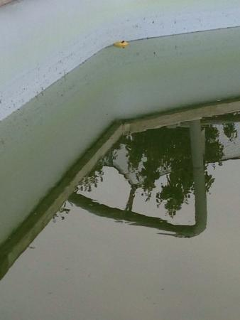 La Ferme du Planet: photo2.jpg