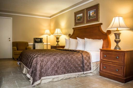 Cheap Hotels Near Ybor City