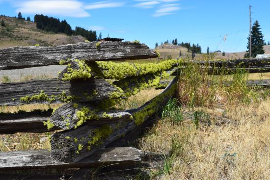 Oroville, WA: Rail fence at Molson