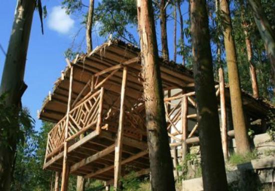 Amasiko Lodge
