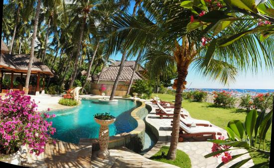 Palm Garden Amed Beach & Spa Resort: Pool und  Liegewiese