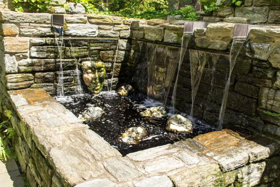 Wayne, PA: Pool with Ruins