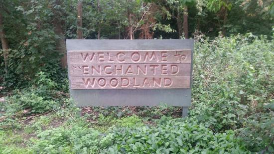 ‪‪Dartford‬, UK: The Enchanted Woodland‬