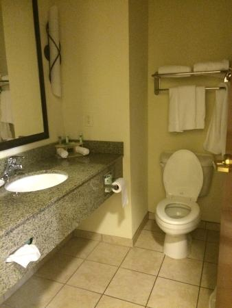 Holiday Inn Express Hotel & Suites Ripley : photo1.jpg