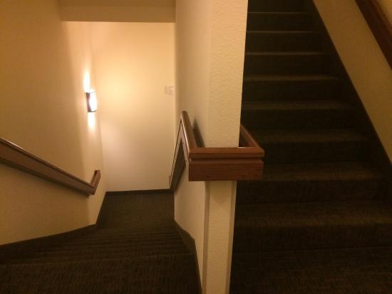 Holiday Inn Express Hotel & Suites Ripley : photo3.jpg