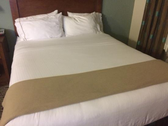 Holiday Inn Express Hotel & Suites Ripley : photo4.jpg