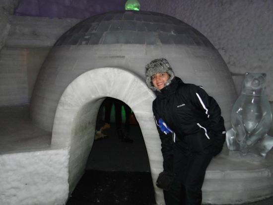 Chena River State Recreation Area: Esculturas en hielo