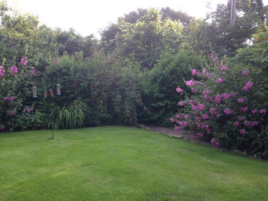 Garden at Whitepark House
