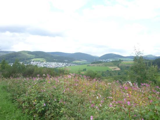 Fredeburg, ألمانيا: omgeving om te wandelen