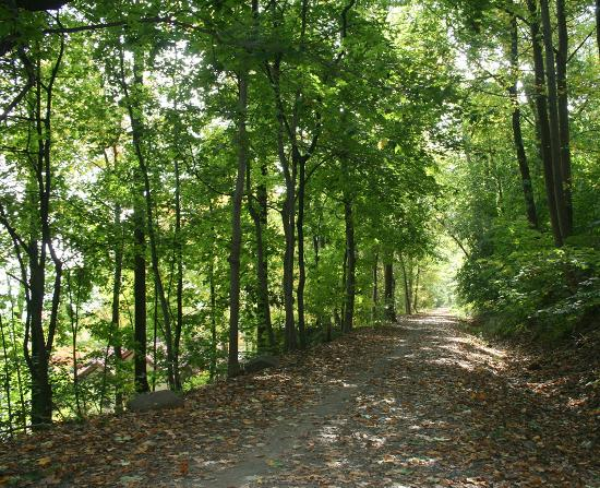 Piermont Train Station and the Erie Path: Bucolic Old Erie Path is a state park with river views through the trees