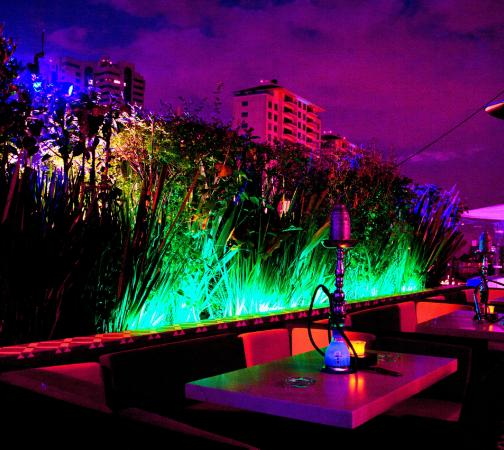 Terraza Picture Of Hookah Santa Fe Mexico City Tripadvisor