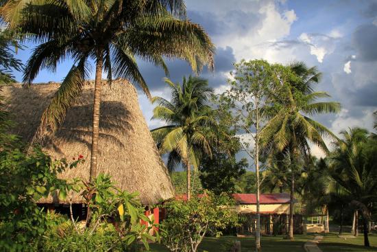 Windy Hill Resort: Resort