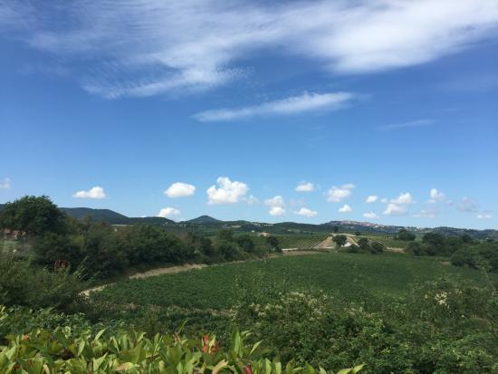 La Cipressina: View from the villa