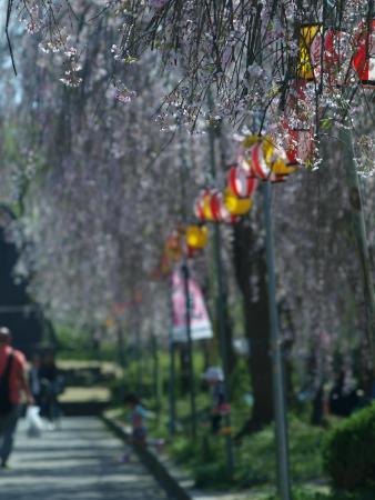 Tsutsujigaoka Park: sendai