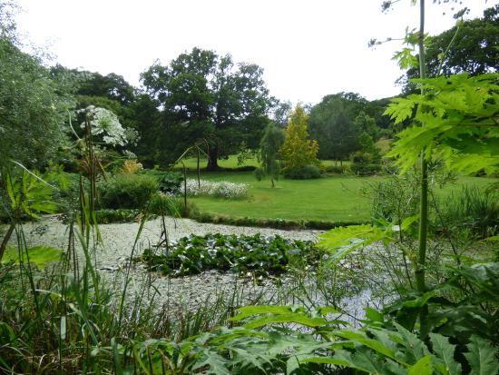 Burrow Farm Gardens: The lake
