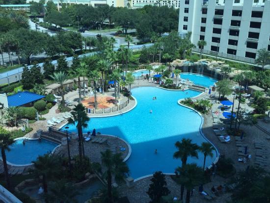 Pool view from hotel room hyatt regency orlando for Pool show orlando 2015