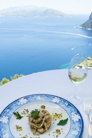 Hotel San Michele: Panorama dal ristorante