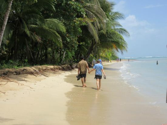 Casa Cayuco: The beach goes on forever and we would take walks along it.
