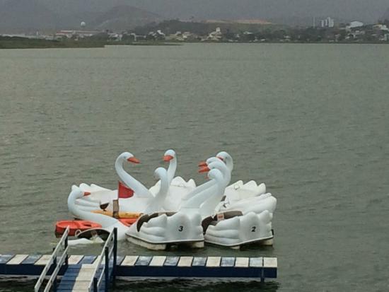 Imboassica Lake
