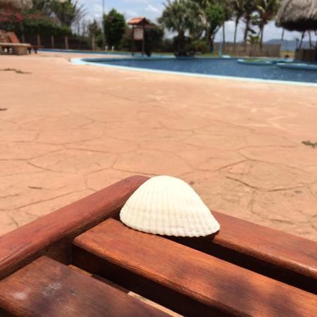 Ecoplaya Beach Resort: photo5.jpg