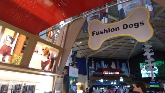 Duty Free Shop Puerto Iguazu: Loja de acessórios para cães