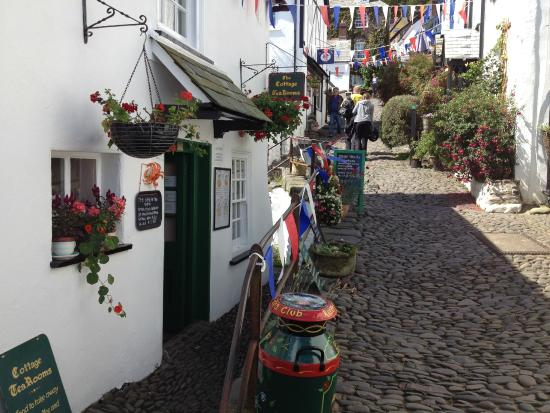 Clovelly Village: Clovelly Tearooms