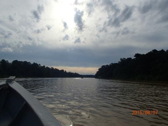 River Cruise  Picture Of Borneo Dream Travel Amp Tours Kota Kinabalu  Tr