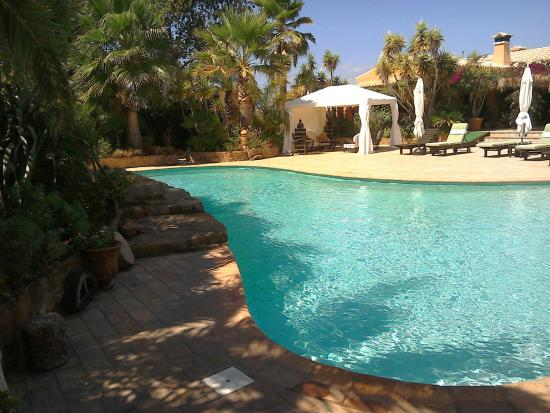 Salsalito: Fantastic pool with jacuzzi