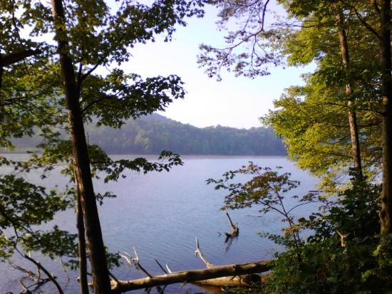 Lake Habeeb From Fir Loop Picture Of Rocky Gap State
