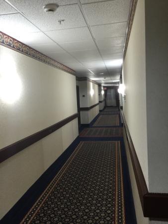 Holiday Inn Express Houston Bush Intercontinental Airport East: photo5.jpg