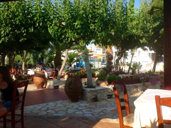 Marem Cafe Restaurant: The garden