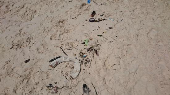 Phi Phi Islands : another garbage