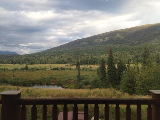 Clearwater Springs Ranch : View from the window