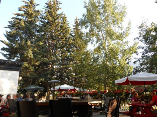 The Georgetown Pub: Garden patio dining