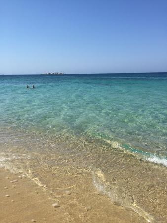 Yazoo Summer Bliss: Pretty little spot