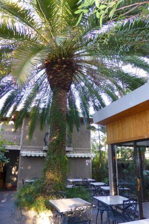 Hotel Pension Palmquell: Frühstücks-Location