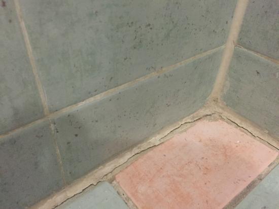 Cement Voegen Badkamer : Voegen in de badkamer picture of amsterdam court hotel new york