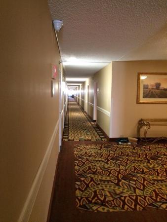 Holiday Inn Somerset-Bridgewater: photo0.jpg