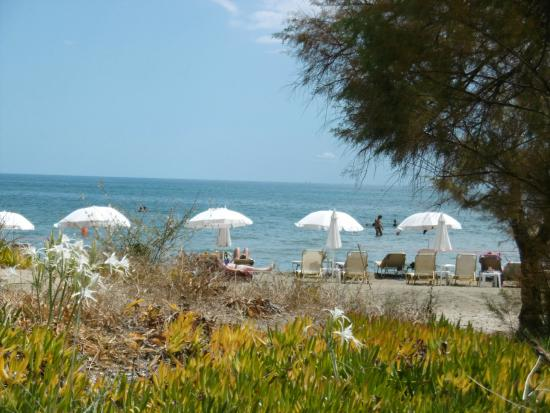 Louis Zante Beach: Vom Pool zum Strand