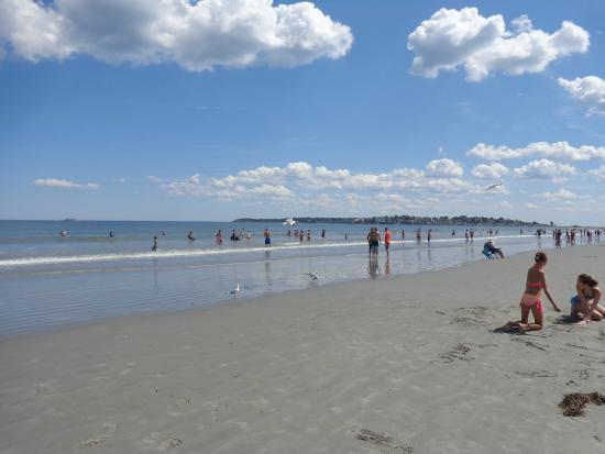 best beaches near boston: Nahant Beach