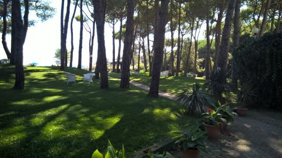 Hotel Beau Rivage Pineta: accesso privato alla piscina e al mare