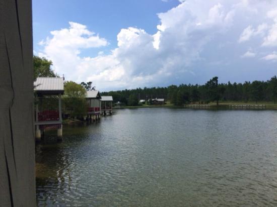 Flat Creek Lodge : Cottage Pond