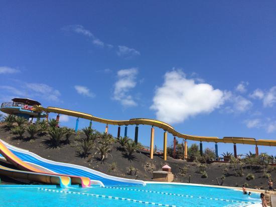 photo1.jpg - Picture of Oasis Park Fuerteventura, Fuerteventura - TripAdvisor