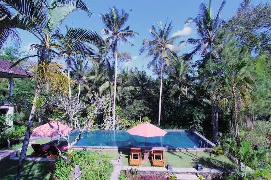 Suara Air Luxury Villa Ubud: Pool & Garden