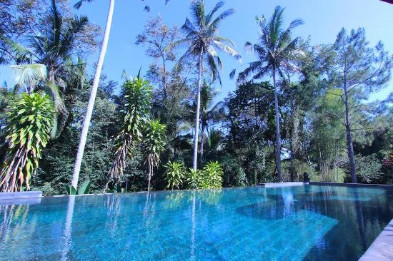Suara Air Luxury Villa Ubud: Main Pool